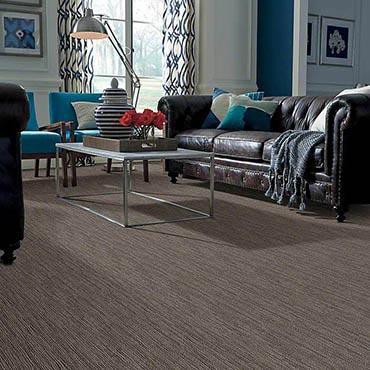 Anso® Nylon Carpet | Salem, OR