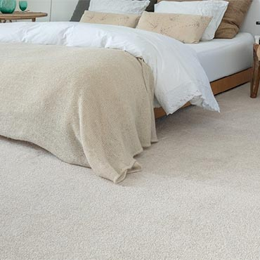 Balta Carpeting | Salem, OR
